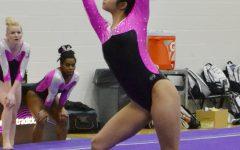 Gymnasts dismantle UW-Oshkosh