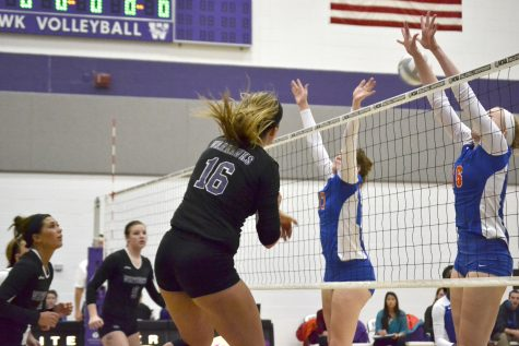 Volleyball: 'Hawks ready for NCAAs, rematch against Bears