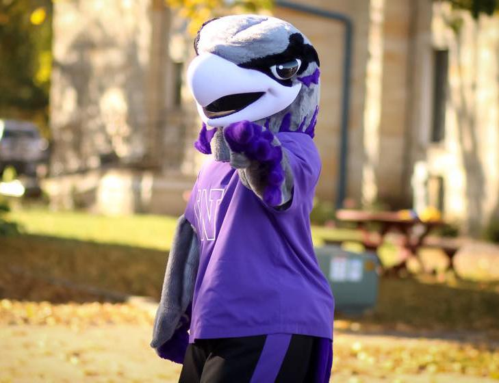 Willie the Warhawk points to the crowd while walking in the 2014 UW-Whitewater Homecoming Parade. Kimberly Wethal photo/ WethalKM20@uww.edu