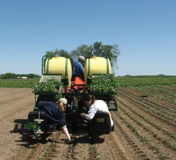 Farm workers at Turtle Creek Gardens transplanting crops. Photo: http://turtlecreekgardenscsa.com/ photo