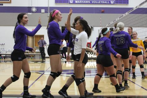 Volleyball honors Panici by continuing streak