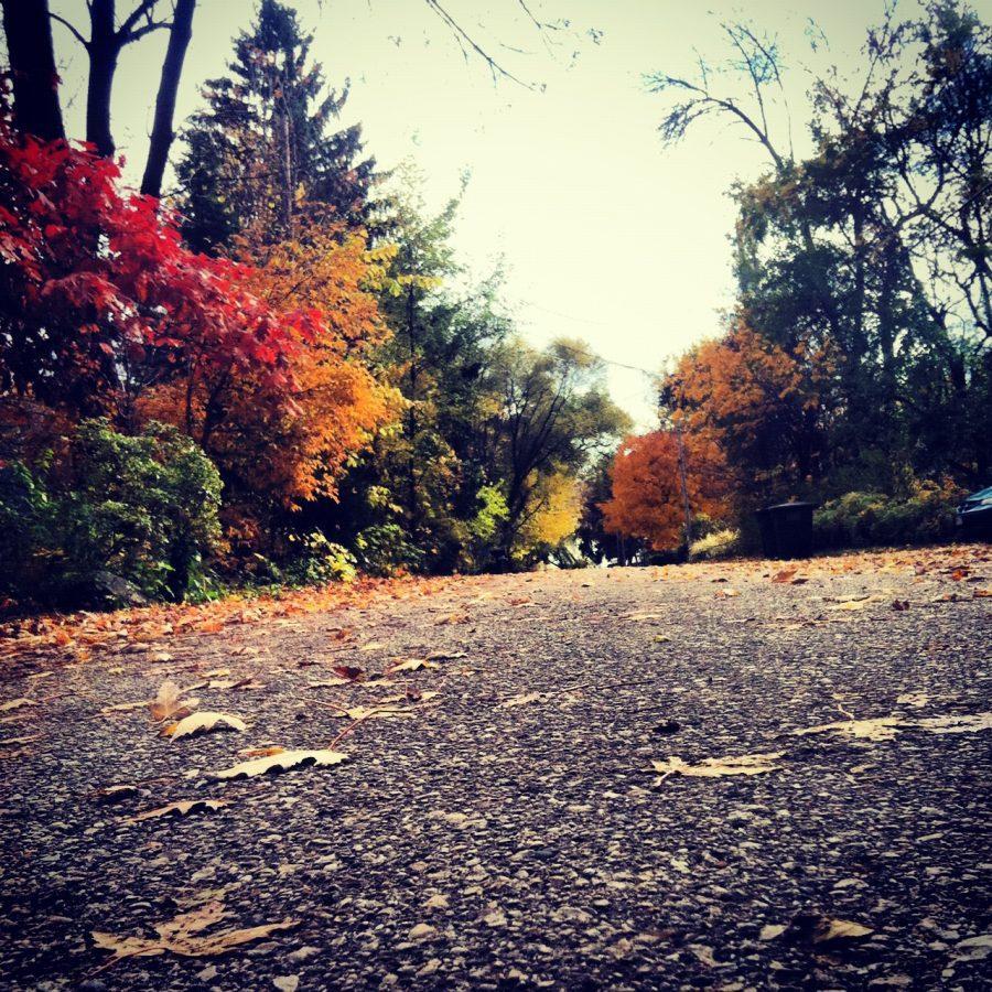 PL%26H%3A+Autumn+weather