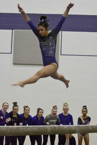 Gymnasts victorious on Senior Day