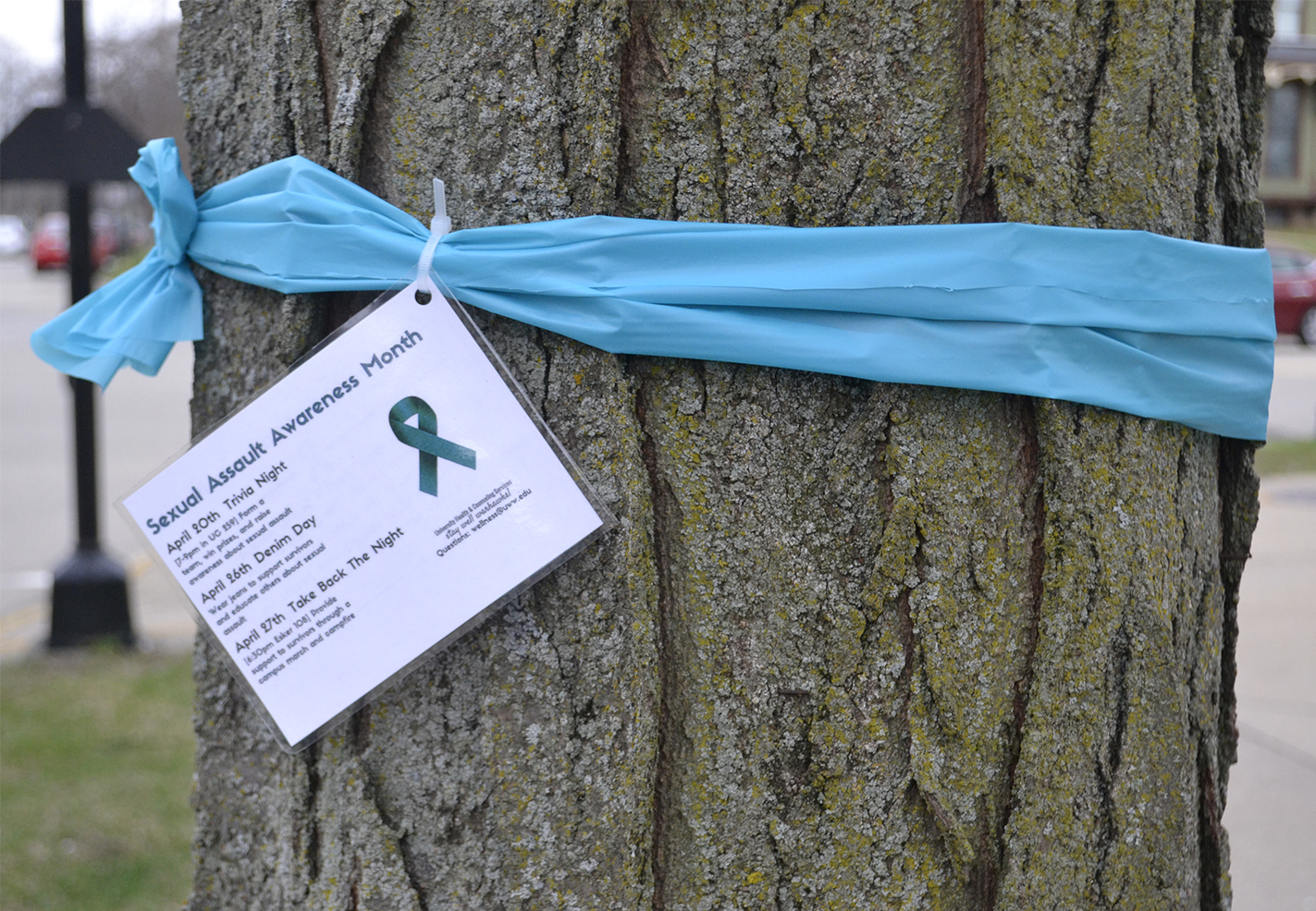 In+recognition+of+April%E2%80%99s+Sexual+Assault+Awareness+Month%2C+trees+on+the+UW-Whitewater+campus+are+decorated+with+blue+ribbons+to+raise+awareness+about+stopping+sexual+assault+on+campus.+