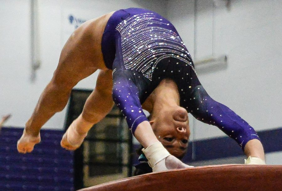 No. 2 gymnastics stays undefeated with sweep