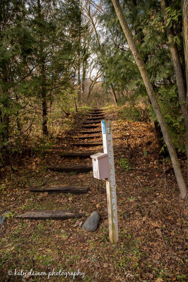 Steps that lead to the Ice Age Trail, a 1,000 mile hiking path that crosses through Wisconsin.