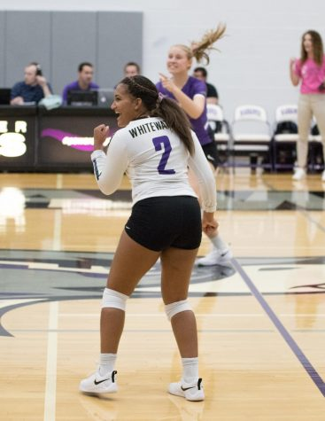 Women's Volleyball Hosts Dig Panici Classic