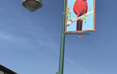 Public art project kicks off