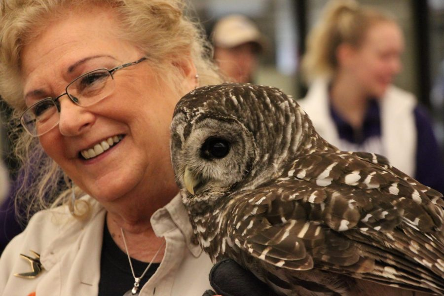 Birds of prey take flight at Andersen Library