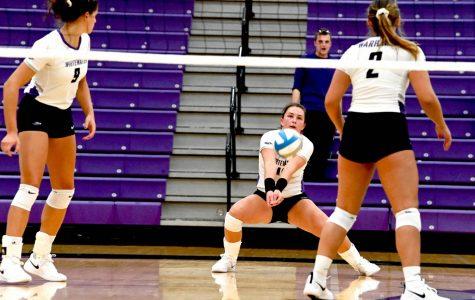 Volleyball soars through season