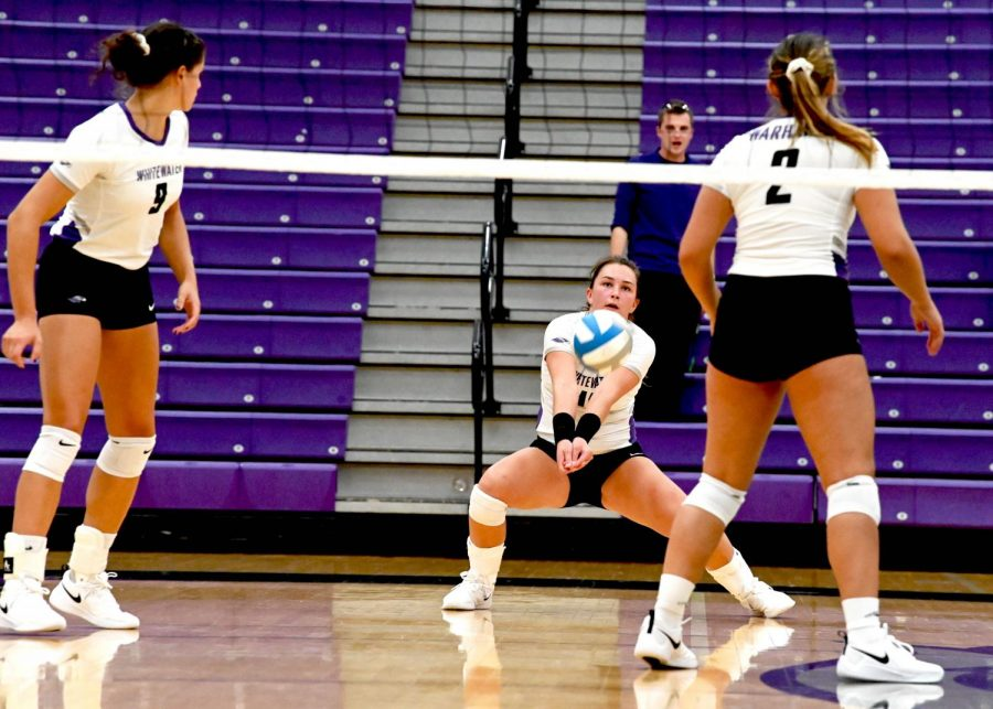 University+of+Wisconsin-Whitewater+Warhawk+Volleyball+continues+its+winning+streak+by+fighting+to+the+end+of+every+match.