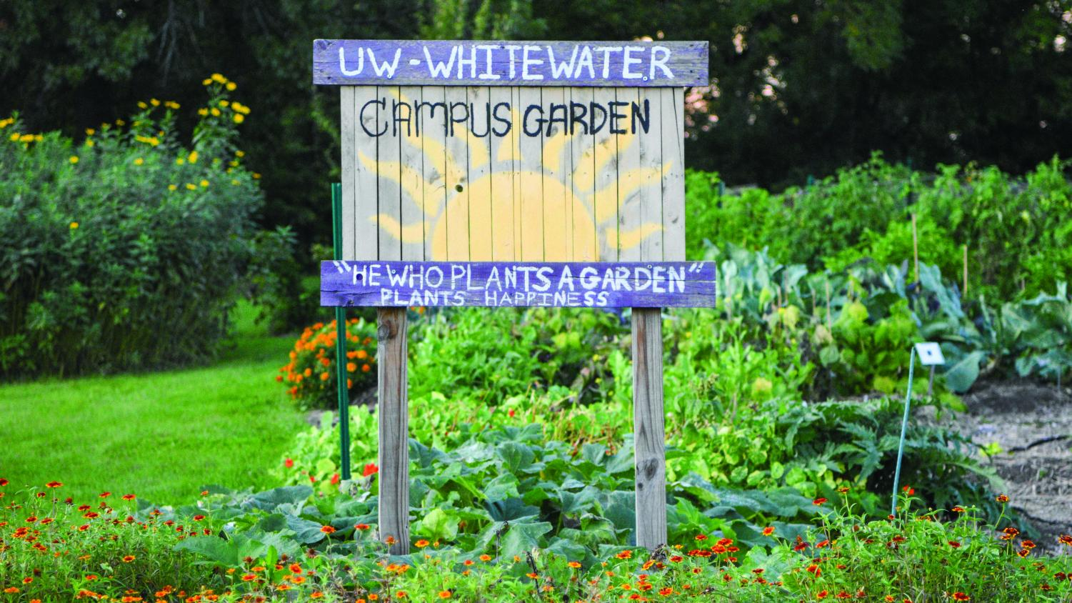 The campus garden, located behind the bookstore is full of colorful vegetation - from flowers to vegetables.