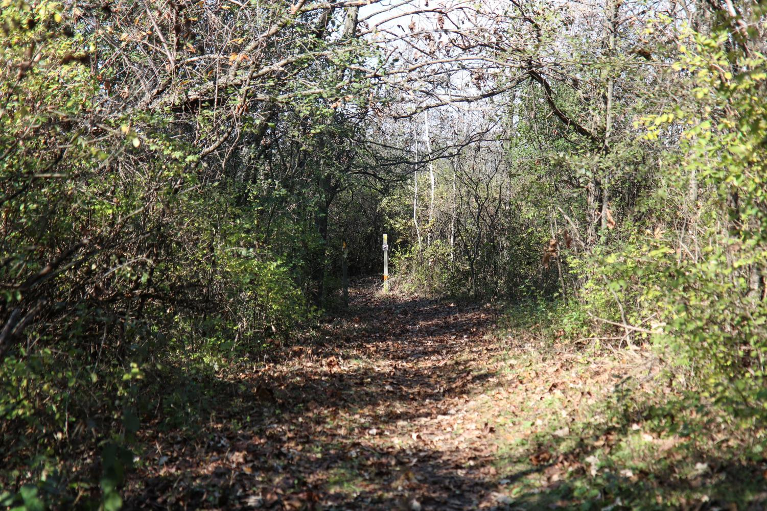 Ice Age Trail National Scenic Trail at South Kettle Moraine.