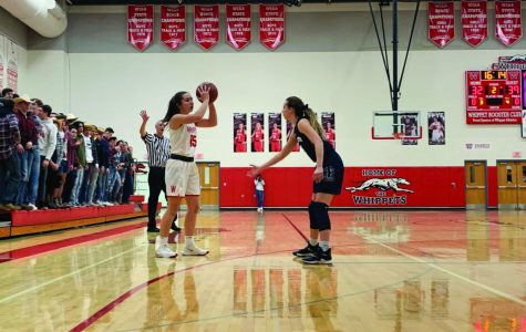 Whippet girls split games, move on to WIAA tournament