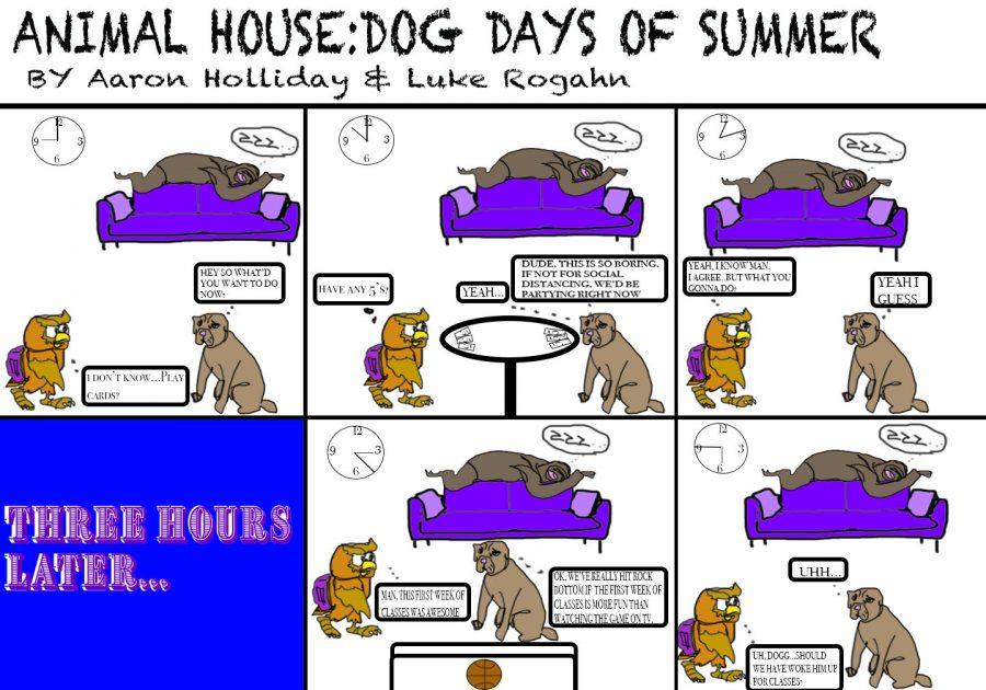 Dog+Days+of+Summer