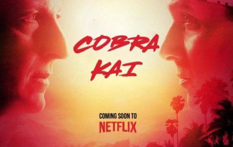 Kick back with Cobra Kai