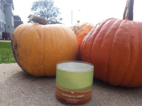 A Draco Candle sitting next to pumpkins.