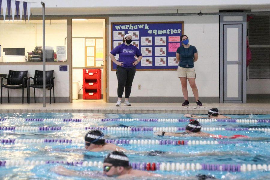 Swim+Coach+2