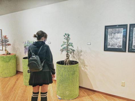 Ashley Snyder browses through Roberta's Art Gallery located in the James R. Connor University Center Dec. 8. The pieces on display are from the Old Myths in a Modern Conversation Collection by the Artist Taylor McDarison.