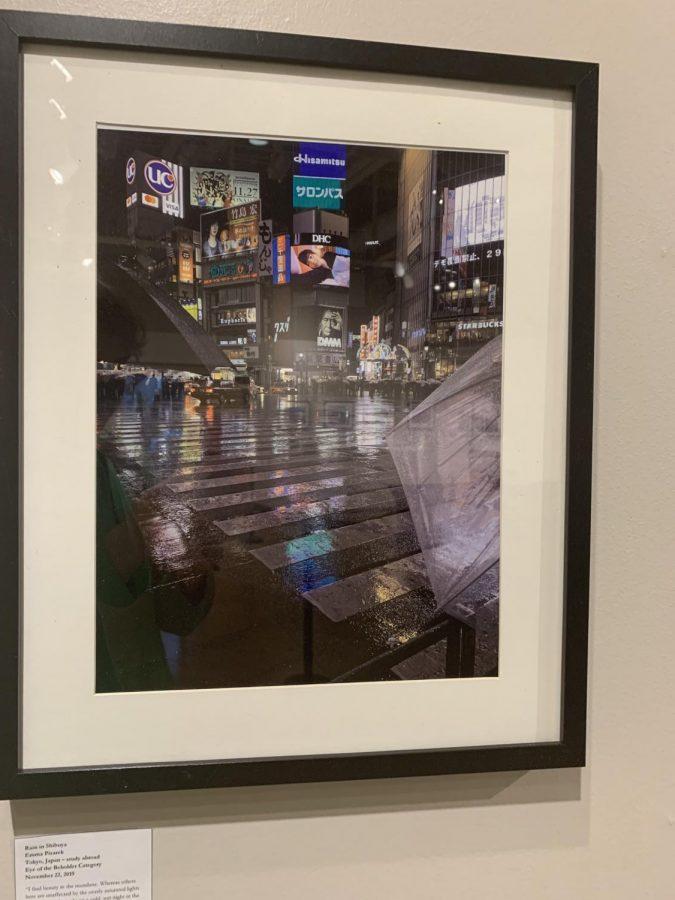 framed picture by Emma Pisarek