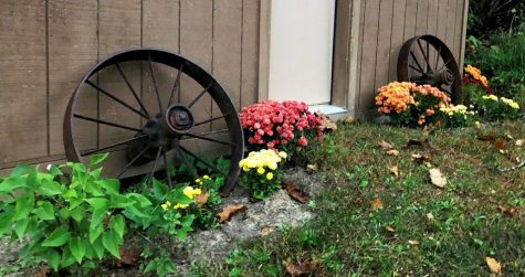 Two iron wheels salvaged from the farm junkyard on the Hardie farm.