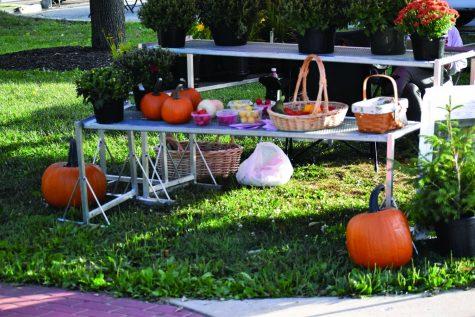 Pumpkins at the farmers market Sept. 14, 2021.