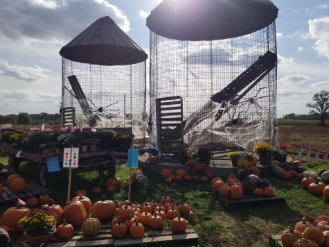 Silos decked out in spider webs as a variety of pumpkins sit below it.