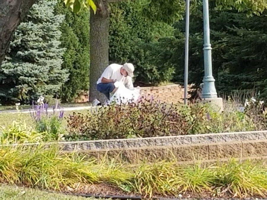 Volunteer+Lynn+Binnie+collecting+trash+in+the+park.